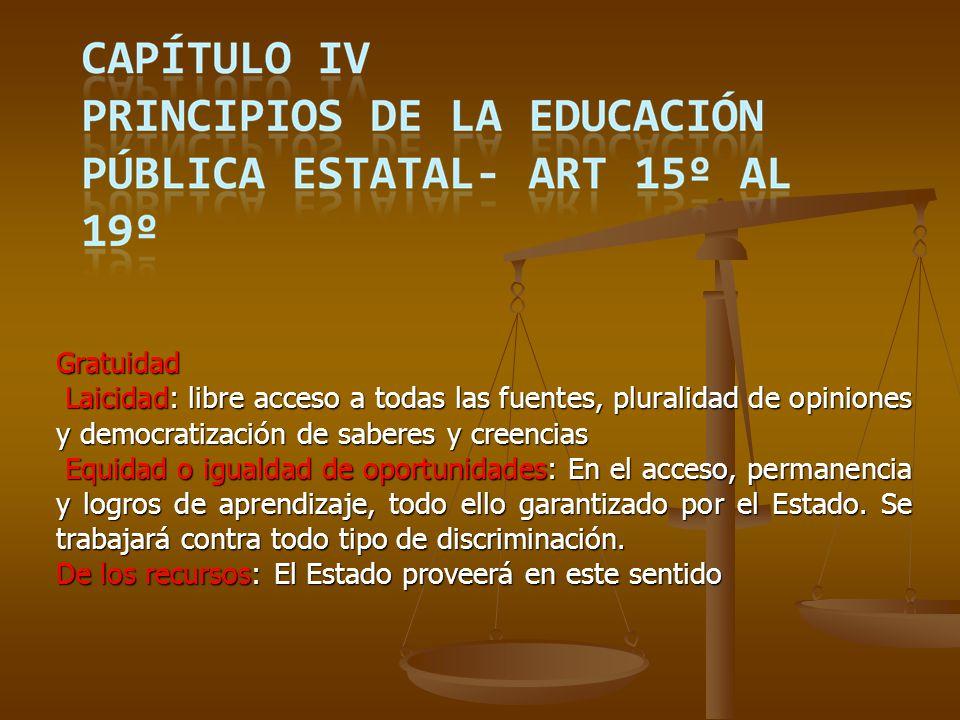 CAPÍTULO XV – Consejo Nacional de Educación no Formal.