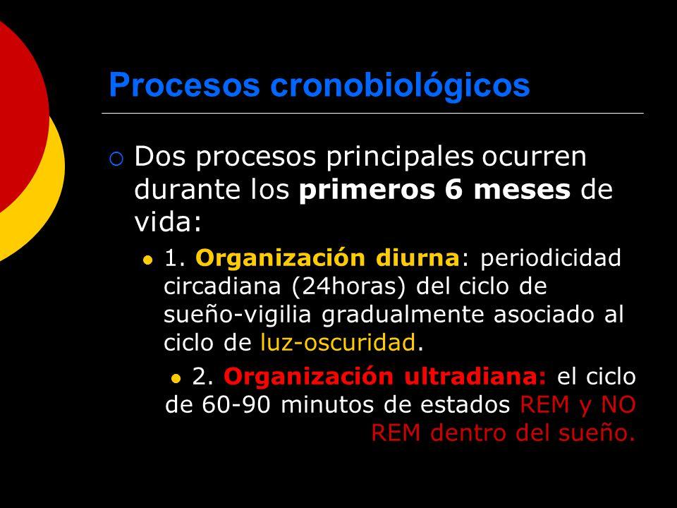 Procesos cronobiológicos Dos procesos principales ocurren durante los primeros 6 meses de vida: 1. Organización diurna: periodicidad circadiana (24hor