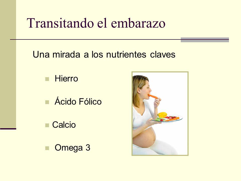 Transitando el embarazo Una mirada a los nutrientes claves Hierro Ácido Fólico Calcio Omega 3