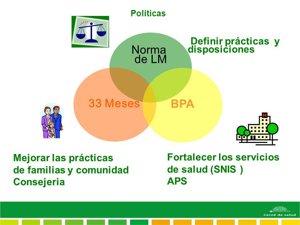 Políticas Mejorar las prácticas de familias y comunidad Consejeria Fortalecer los servicios de salud (SNIS ) APS Norma de LM 33 Meses BPA Definir prácticas y disposiciones