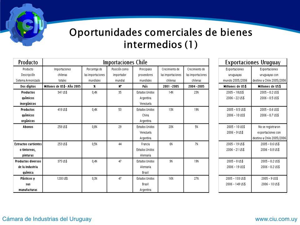 Oportunidades comerciales de bienes intermedios (1)