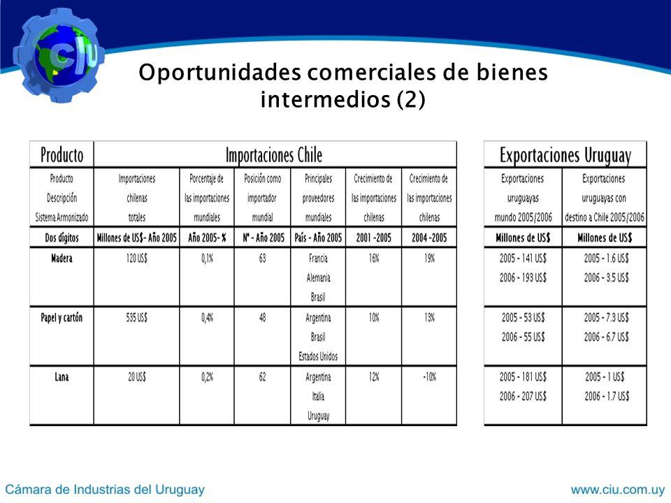 Oportunidades comerciales de bienes intermedios (2)