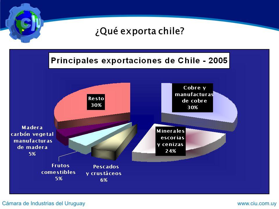 Resultados del cruzamiento de datos 1) Importaciones chilenas (superiores a US$ 9 millones) de bienes primarios cruzadas con las exportaciones uruguayas de los mismos bienes (superiores al millón de US$).