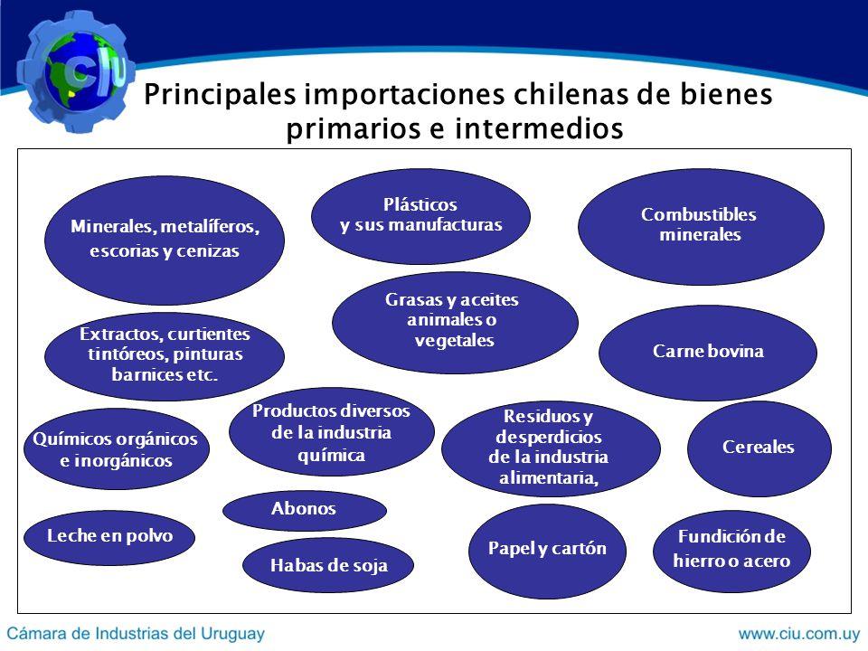 Algunos comentarios sobre la inserción externa de Chile En 2006 Chile exportó en el entorno de los US$ 56 mil millones.
