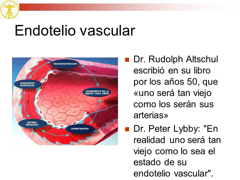 Endotelio vascular Dr. Rudolph Altschul escribió en su libro por los años 50, que «uno será tan viejo como los serán sus arterias» Dr. Peter Lybby: