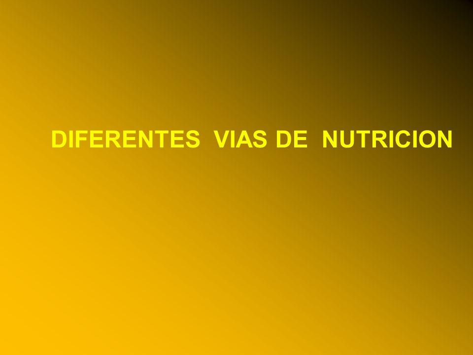 24/03/12 DIFERENTES VIAS DE NUTRICION