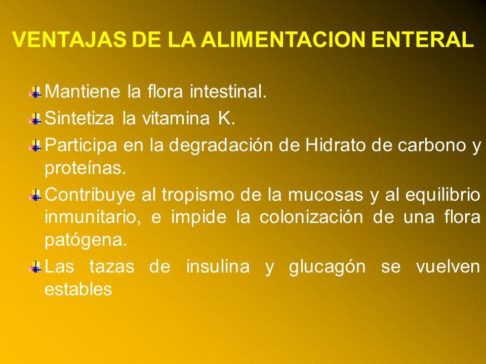 24/03/12 VENTAJAS DE LA ALIMENTACION ENTERAL Mantiene la flora intestinal. Sintetiza la vitamina K. Participa en la degradación de Hidrato de carbono