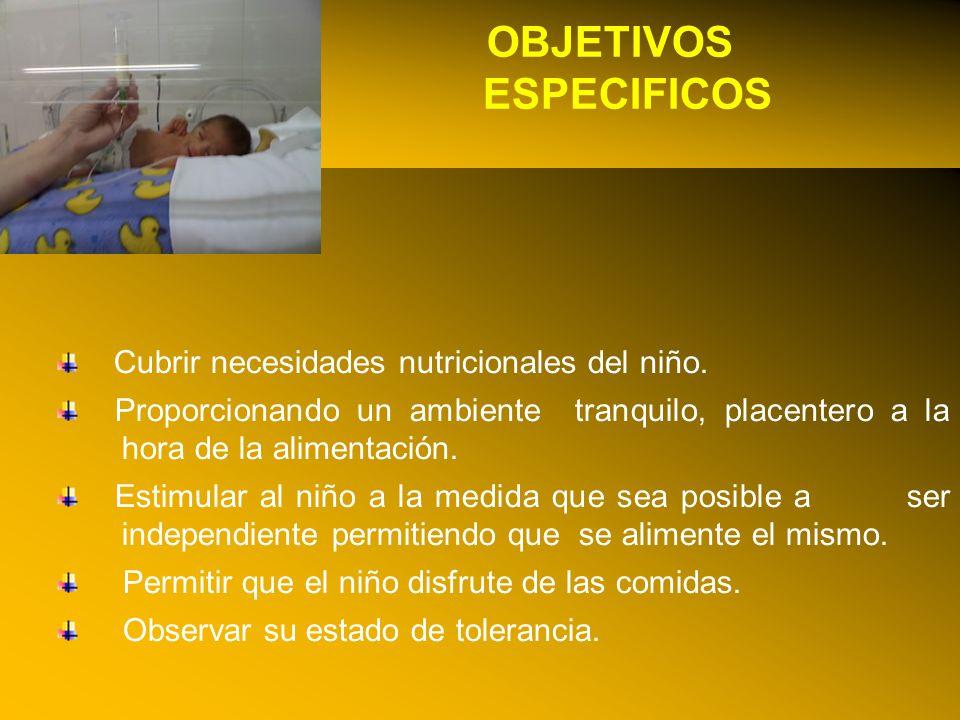 24/03/12 OBJETIVOS ESPECIFICOS Cubrir necesidades nutricionales del niño. Proporcionando un ambiente tranquilo, placentero a la hora de la alimentació