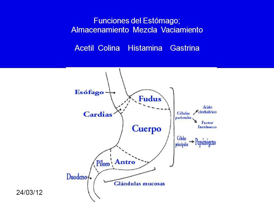 24/03/12 ALTERACION HEMODINAMICA Hipotensión Taquicardia - Bradicardia Fiebre Hipotermia Sed.
