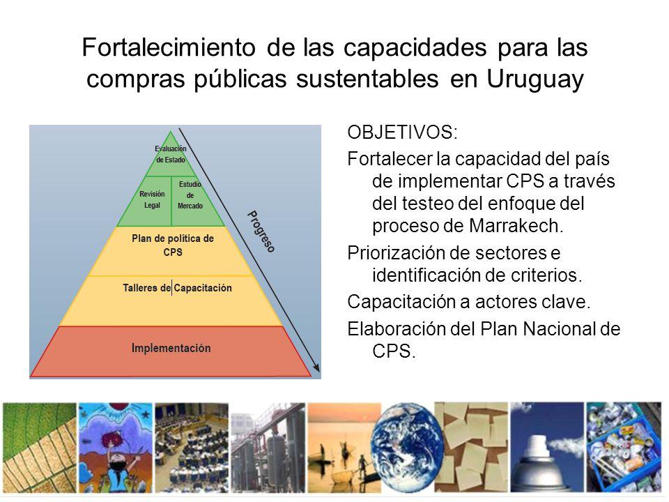 Instituciones participantes Comité Directivo Oficina de Planeamiento y Presupuesto (OPP) Programa de las Naciones Unidas para el Medio Ambiente (PNUMA) Ministerio de Vivienda, Ordenamiento Territorial y Medio Ambiente – DINAMA Ministerio de Industria, Energía y Minería – DINAPYME Ministerio de Industria, Energía y Minería- DNETN- Proyecto Eficiencia Energética Laboratorio Tecnológico del Uruguay (LATU) Agencia para el Desarrollo del Gobierno de Gestión Electrónica y la Sociedad de la Información y del Conocimiento (AGESIC) Administración Nacional de Usinas y Trasmisiones Eléctricas (UTE) Universidad de la República (UDELAR) Ministerio de Economía y Finanzas – Unidad Centralizada de Adquisiciones (UCA) Cámara de Industrias (CIU) Cámara Nacional de Comercio y Servicios (CNCS)