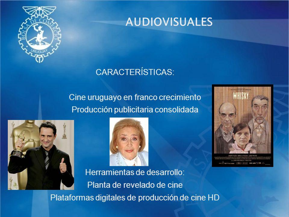 AUDIOVISUALES CARACTERÍSTICAS: Cine uruguayo en franco crecimiento Producción publicitaria consolidada Herramientas de desarrollo: Planta de revelado