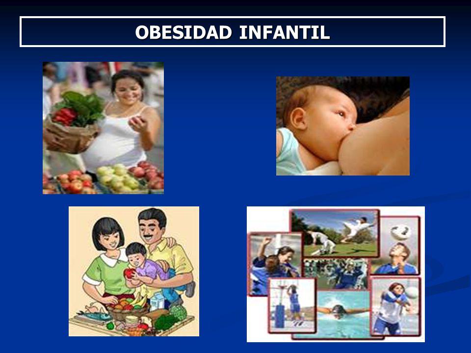OBESIDAD INFANTIL 2010 Jornadas de Nutriguía Dra. Alicia Recalde