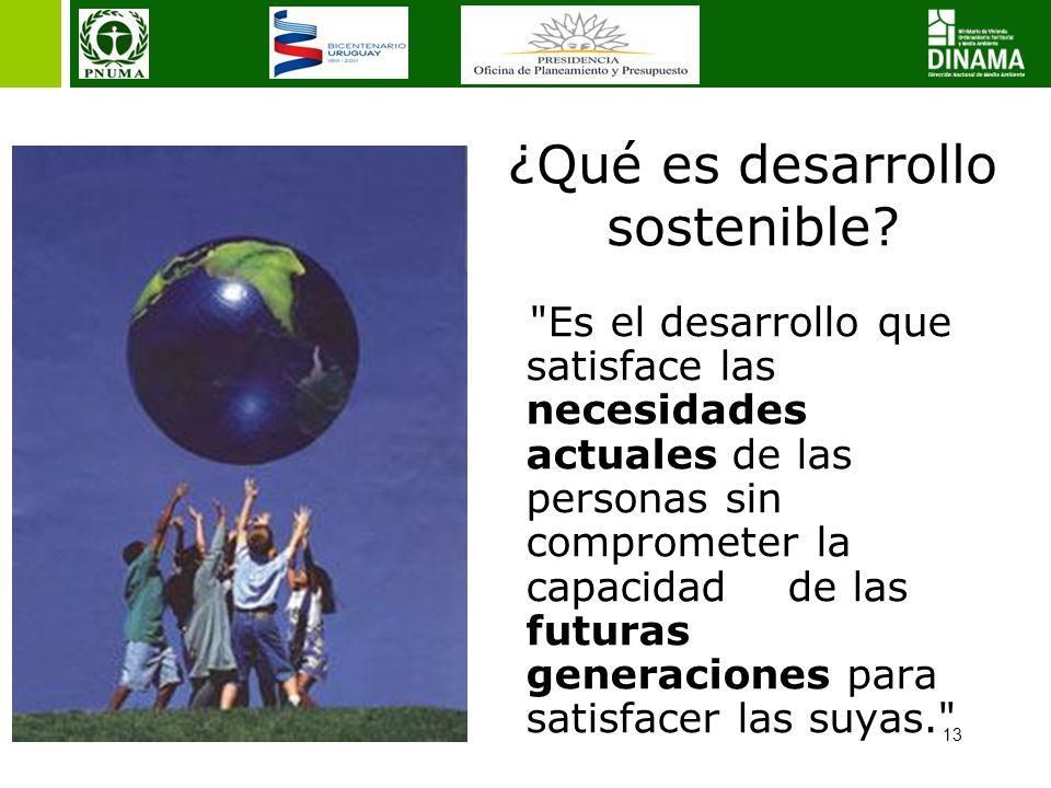13 ¿Qué es desarrollo sostenible?