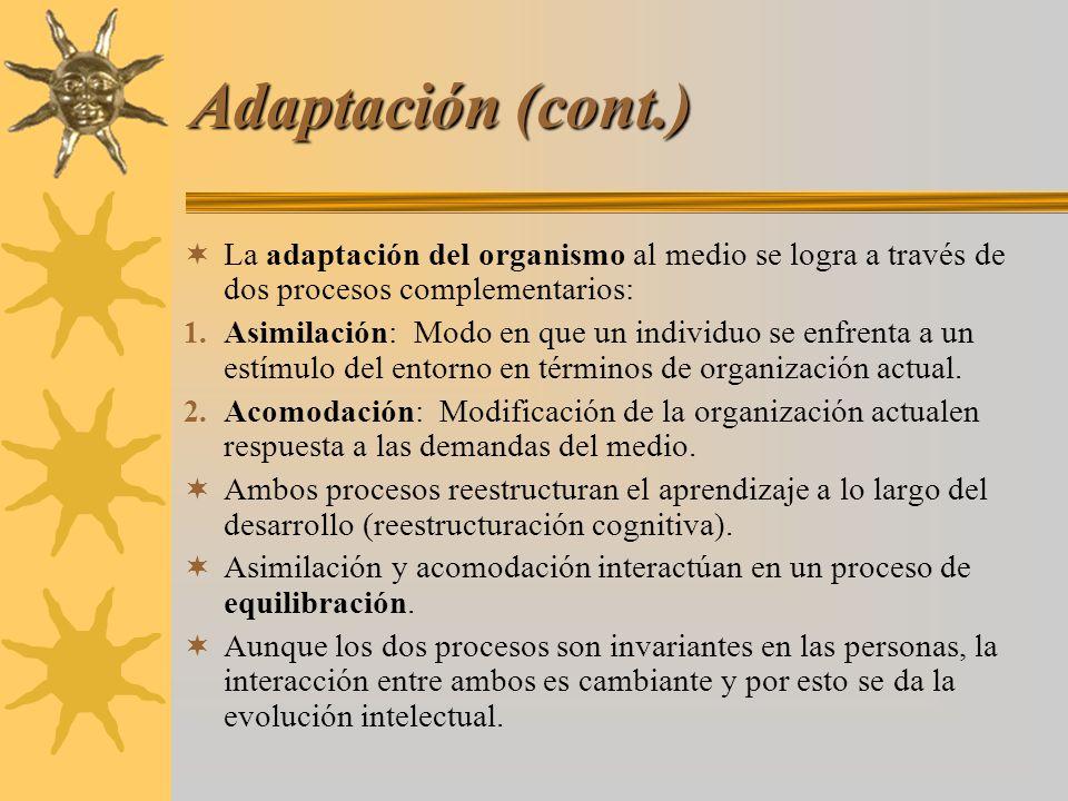 Adaptación (cont.) La adaptación del organismo al medio se logra a través de dos procesos complementarios: 1. Asimilación: Modo en que un individuo se