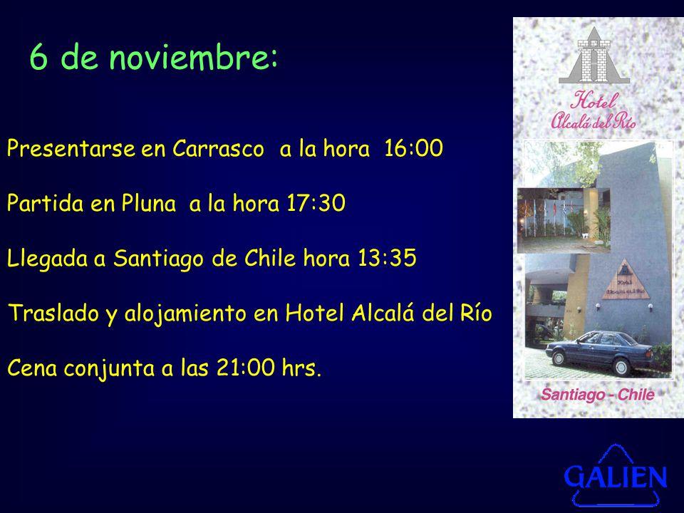 Presentarse en Carrasco a la hora 16:00 Partida en Pluna a la hora 17:30 Llegada a Santiago de Chile hora 13:35 Traslado y alojamiento en Hotel Alcalá del Río Cena conjunta a las 21:00 hrs.
