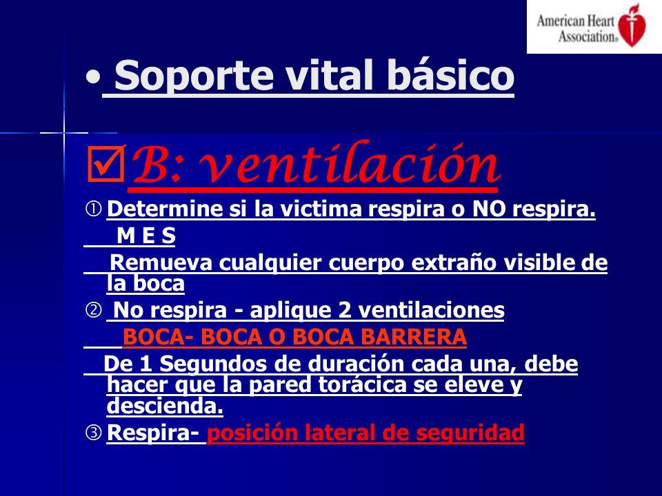Soporte vital básico B: ventilación Determine si la victima respira o NO respira. M E S Remueva cualquier cuerpo extraño visible de la boca No respira
