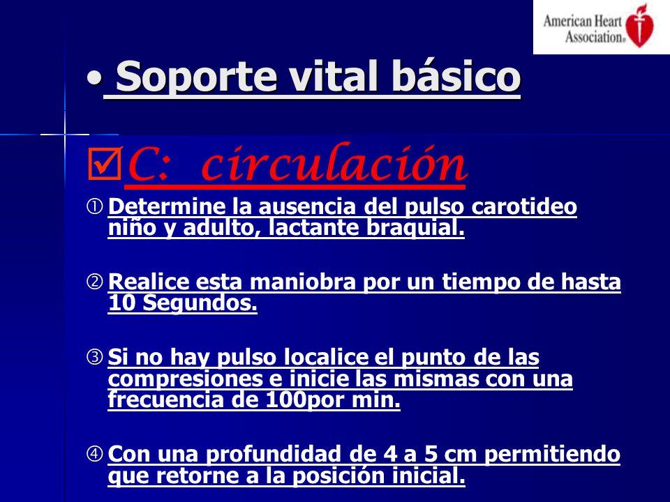 Soporte vital básico Soporte vital básico C: circulación Determine la ausencia del pulso carotideo niño y adulto, lactante braquial.