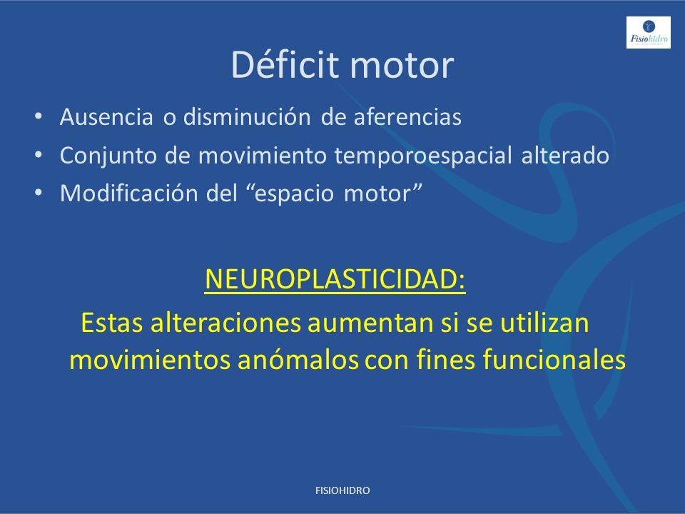 Déficit motor Ausencia o disminución de aferencias Conjunto de movimiento temporoespacial alterado Modificación del espacio motor NEUROPLASTICIDAD: Es