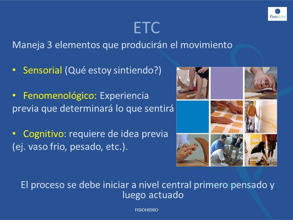 ETC Maneja 3 elementos que producirán el movimiento Sensorial (Qué estoy sintiendo?) Fenomenológico: Experiencia previa que determinará lo que sentirá