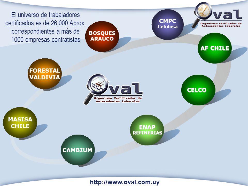 BOSQUES ARAUCO CMPC Celulosa AF CHILE CAMBIUM http://www.oval.com.uy MASISA CHILE FORESTAL VALDIVIA ENAPREFINERIAS El universo de trabajadores certifi