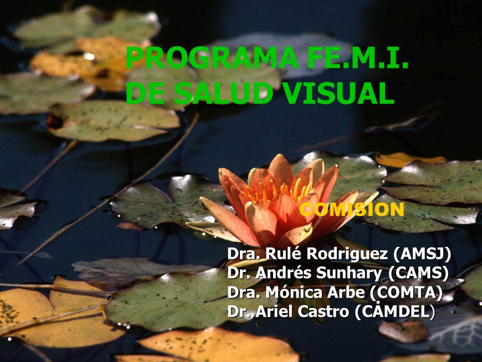 PROGRAMA FE.M.I. DE SALUD VISUAL COMISION Dra. Rulé Rodriguez (AMSJ) Dr. Andrés Sunhary (CAMS) Dra. Mónica Arbe (COMTA) Dr. Ariel Castro (CAMDEL)