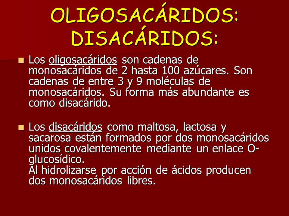 OLIGOSACÁRIDOS DISACÁRIDOS