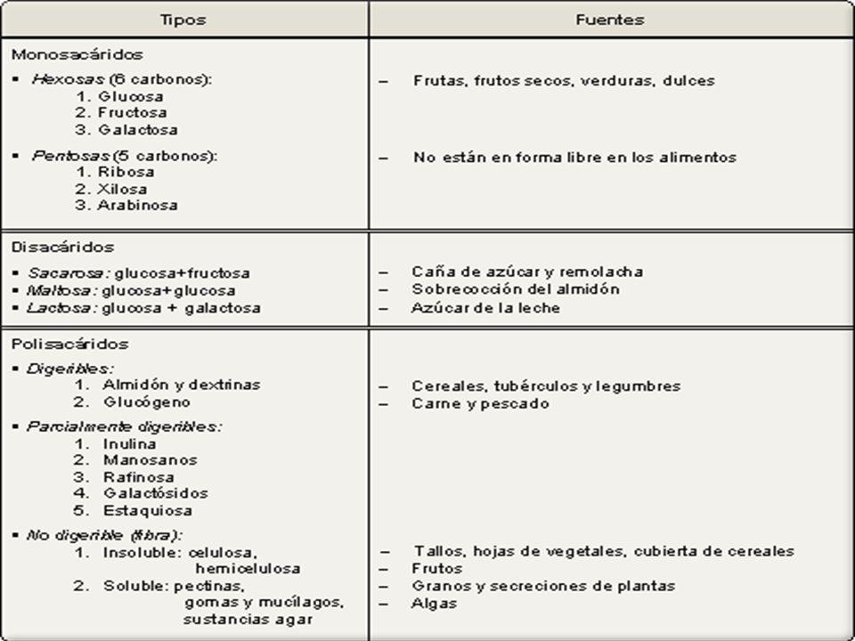 CLASIFICACIÓN: Monosacáridos Monosacáridos Oligosacáridos, los más comunes son los Disacáridos. Oligosacáridos, los más comunes son los Disacáridos. P