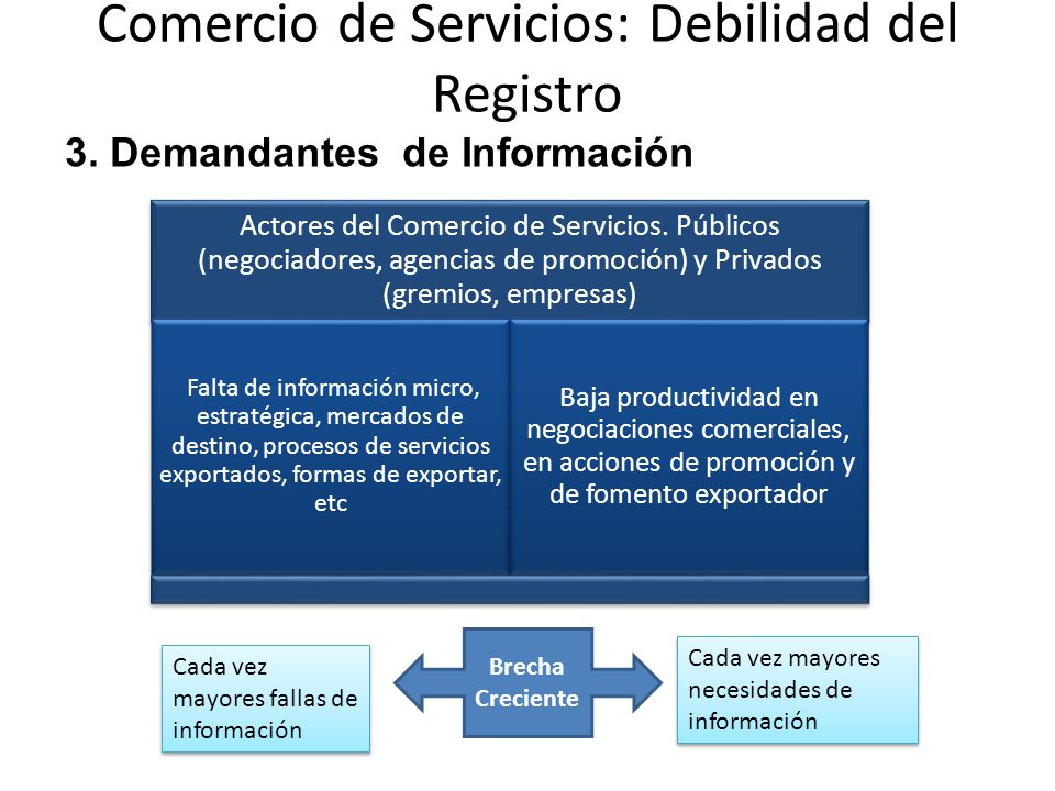 Comercio de Servicios: Debilidad del Registro Actores del Comercio de Servicios.