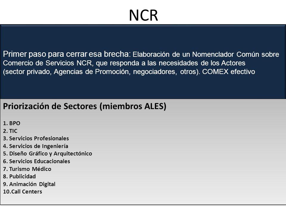 NCR Primer paso para cerrar esa brecha: Elaboración de un Nomenclador Común sobre Comercio de Servicios NCR, que responda a las necesidades de los Actores (sector privado, Agencias de Promoción, negociadores, otros).