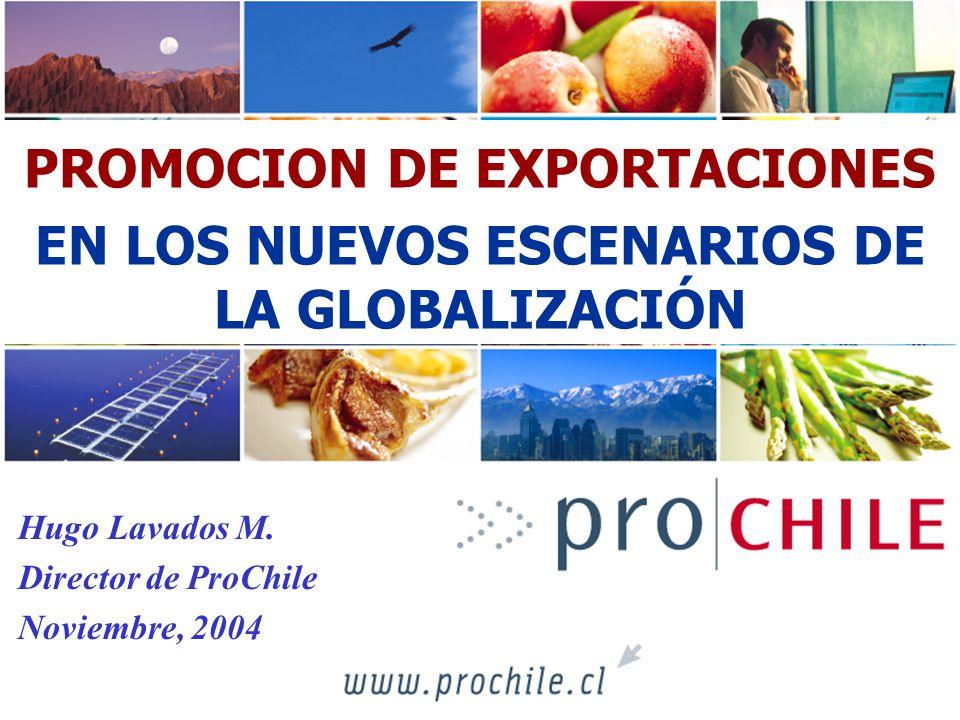 PROMOCION DE EXPORTACIONES EN LOS NUEVOS ESCENARIOS DE LA GLOBALIZACIÓN Hugo Lavados M. Director de ProChile Noviembre, 2004