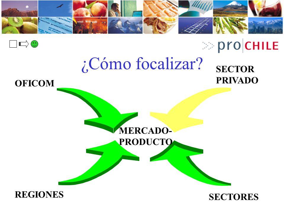 ¿Cómo focalizar? OFICOM REGIONES SECTORES SECTOR PRIVADO MERCADO- PRODUCTO