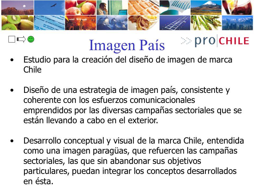 Imagen País Estudio para la creación del diseño de imagen de marca Chile Diseño de una estrategia de imagen país, consistente y coherente con los esfu