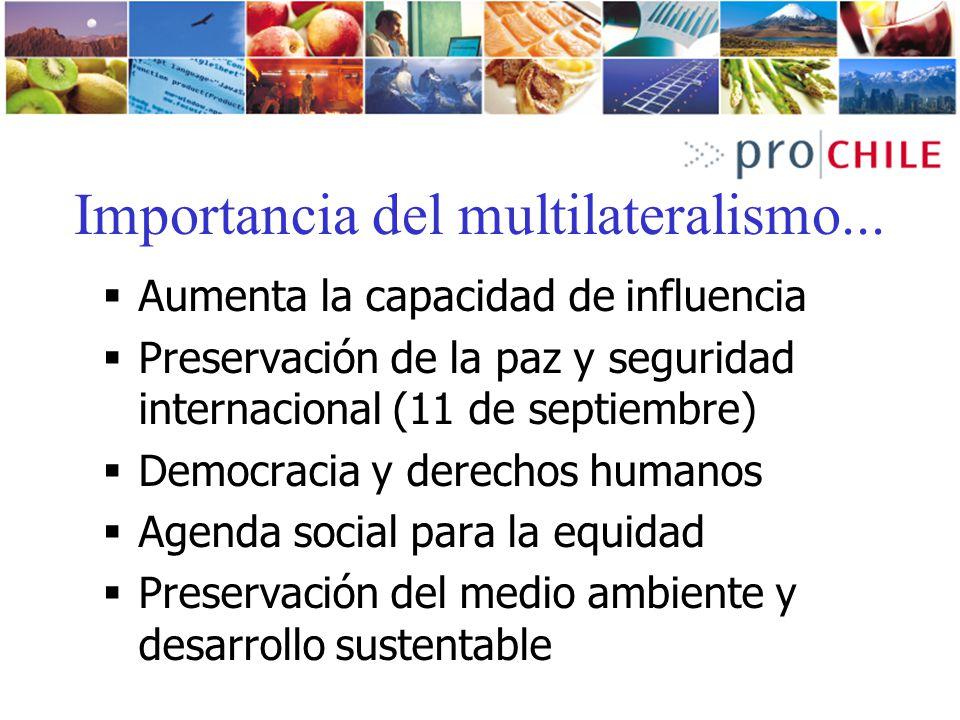 Importancia del multilateralismo... Aumenta la capacidad de influencia Preservación de la paz y seguridad internacional (11 de septiembre) Democracia