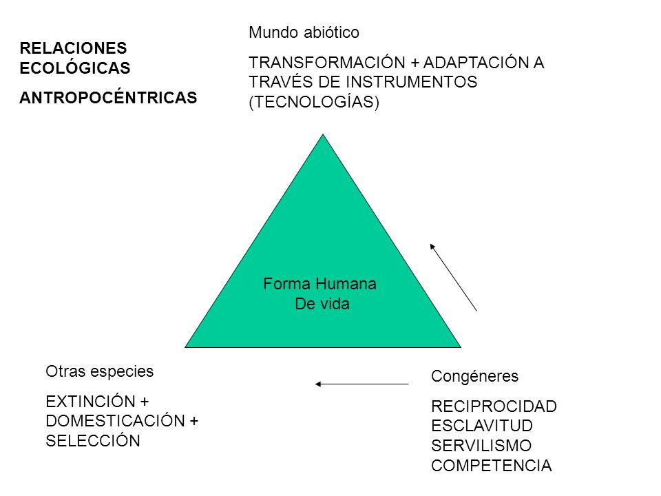 Forma Humana De vida Mundo abiótico TRANSFORMACIÓN + ADAPTACIÓN A TRAVÉS DE INSTRUMENTOS (TECNOLOGÍAS) Congéneres RECIPROCIDAD ESCLAVITUD SERVILISMO COMPETENCIA Otras especies EXTINCIÓN + DOMESTICACIÓN + SELECCIÓN RELACIONES ECOLÓGICAS ANTROPOCÉNTRICAS