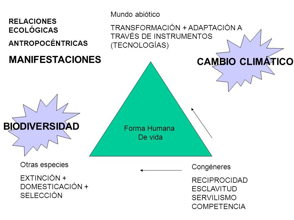 Forma Humana De vida Mundo abiótico TRANSFORMACIÓN + ADAPTACIÓN A TRAVÉS DE INSTRUMENTOS (TECNOLOGÍAS) Congéneres RECIPROCIDAD ESCLAVITUD SERVILISMO COMPETENCIA Otras especies EXTINCIÓN + DOMESTICACIÓN + SELECCIÓN RELACIONES ECOLÓGICAS ANTROPOCÉNTRICAS MANIFESTACIONES CAMBIO CLIMÁTICO BIODIVERSIDAD