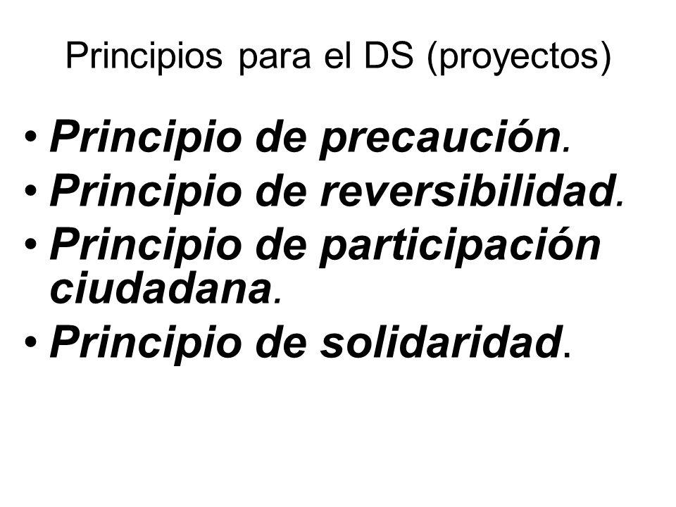 Principios para el DS (proyectos) Principio de precaución.