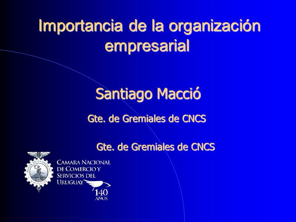 Importancia de la organización empresarial Importancia de la organización empresarial Santiago Macció Gte. de Gremiales de CNCS
