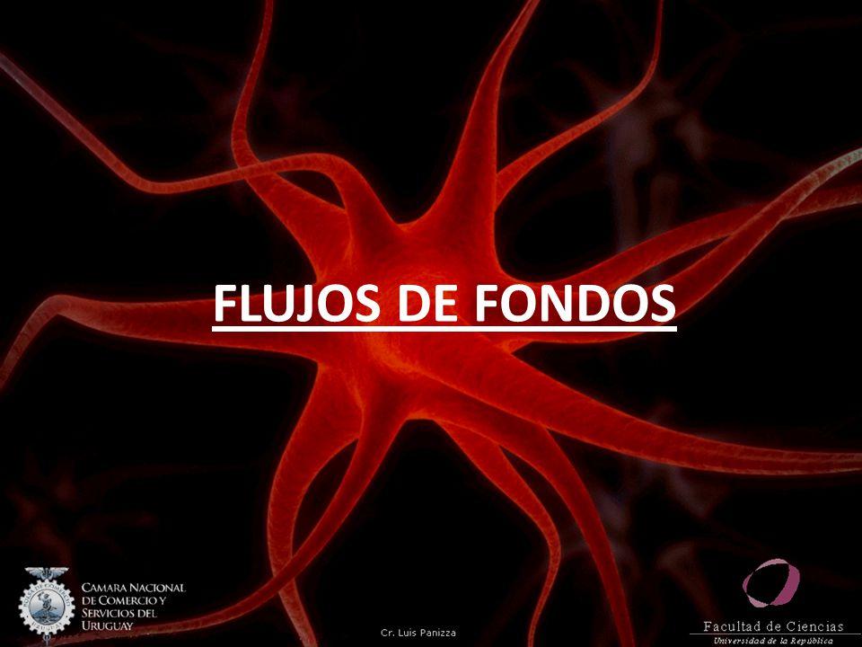 FLUJOS DE FONDOS