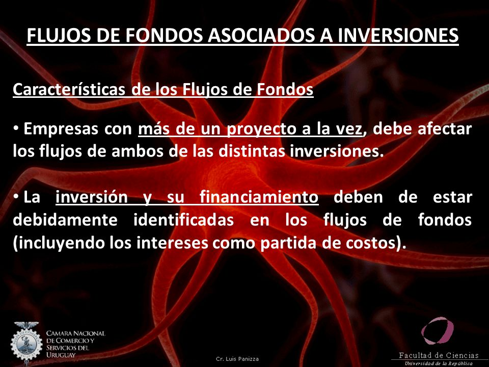 FLUJOS DE FONDOS ASOCIADOS A INVERSIONES Características de los Flujos de Fondos Empresas con más de un proyecto a la vez, debe afectar los flujos de