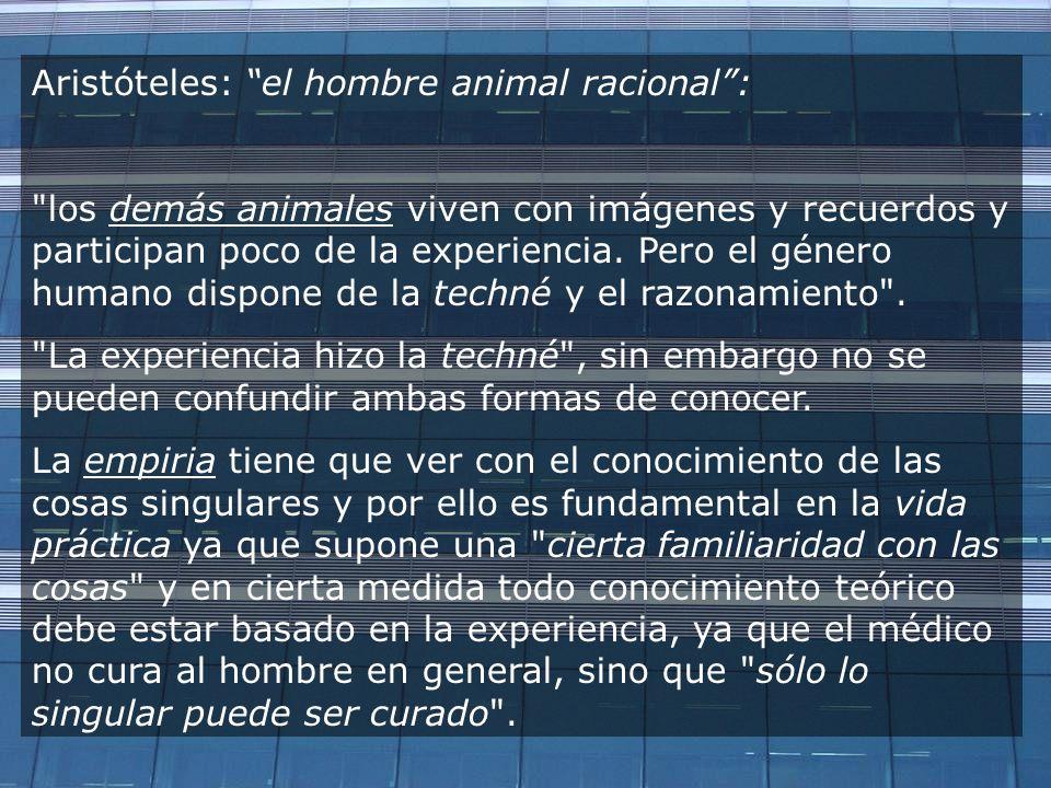 Aristóteles: el hombre animal racional: