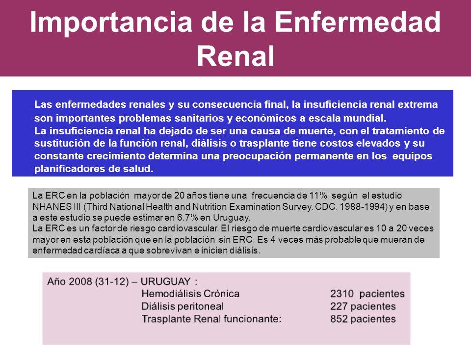 Importancia de la Enfermedad Renal Las enfermedades renales y su consecuencia final, la insuficiencia renal extrema son importantes problemas sanitari
