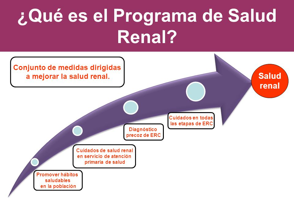 ¿Qué es el Programa de Salud Renal? Salud renal Promover hábitos saludables en la población Cuidados de salud renal en servicio de atención primaria d