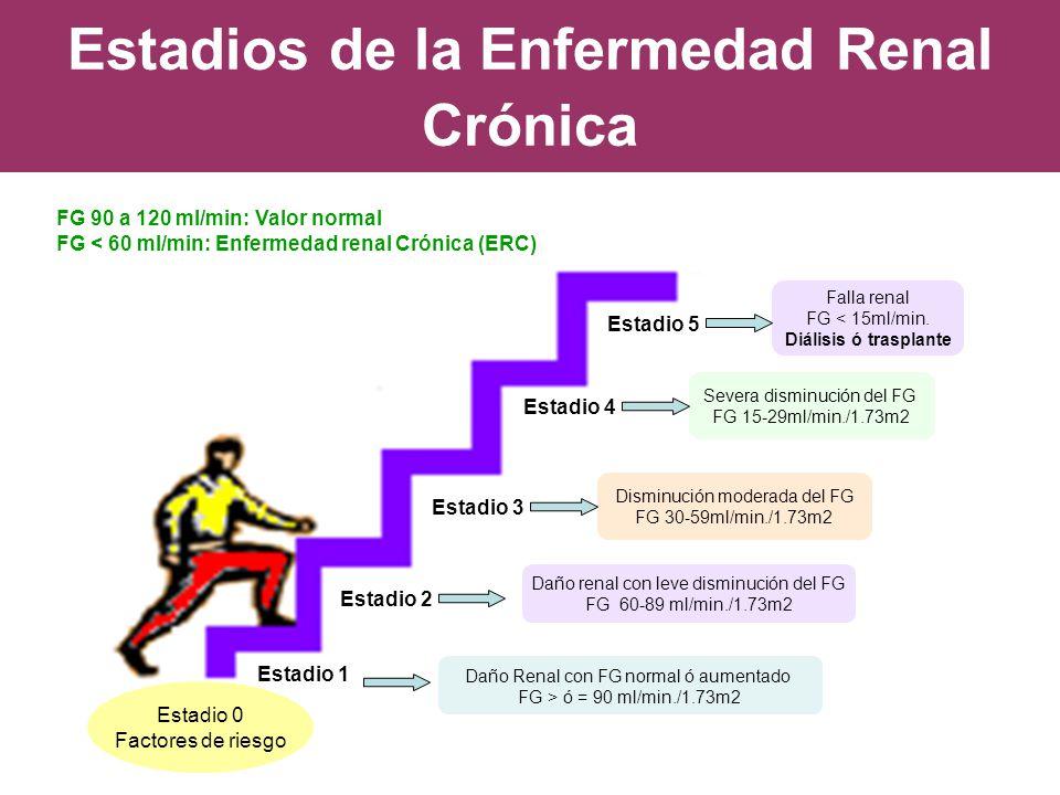Estadios de la Enfermedad Renal Crónica FG 90 a 120 ml/min: Valor normal FG < 60 ml/min: Enfermedad renal Crónica (ERC) Estadio 1 Estadio 2 Estadio 4