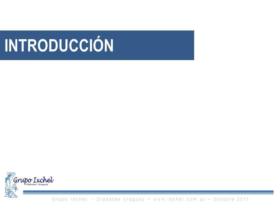 INTRODUCCIÓN Grupo Ixchel - Diabetes Uruguay – www.ixchel.com.uy – Octubre 2011