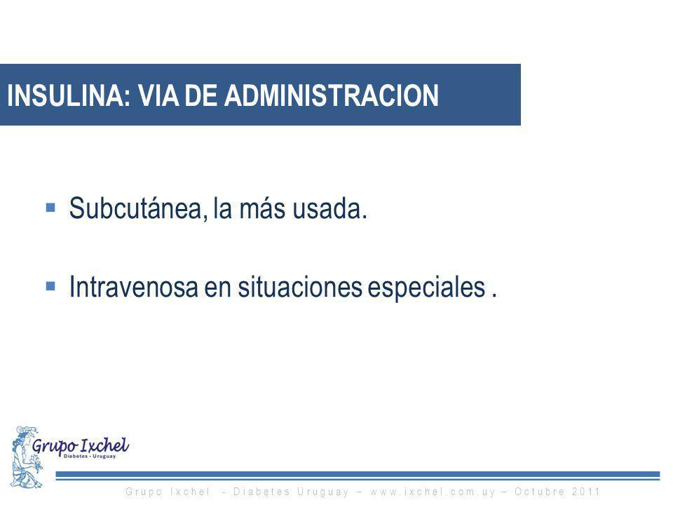 INSULINA: VIA DE ADMINISTRACION Subcutánea, la más usada. Intravenosa en situaciones especiales. Grupo Ixchel - Diabetes Uruguay – www.ixchel.com.uy –