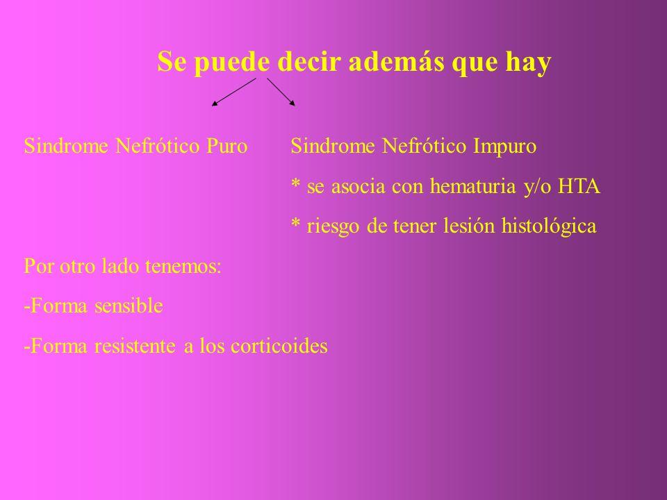 Se puede decir además que hay Sindrome Nefrótico PuroSindrome Nefrótico Impuro * se asocia con hematuria y/o HTA * riesgo de tener lesión histológica