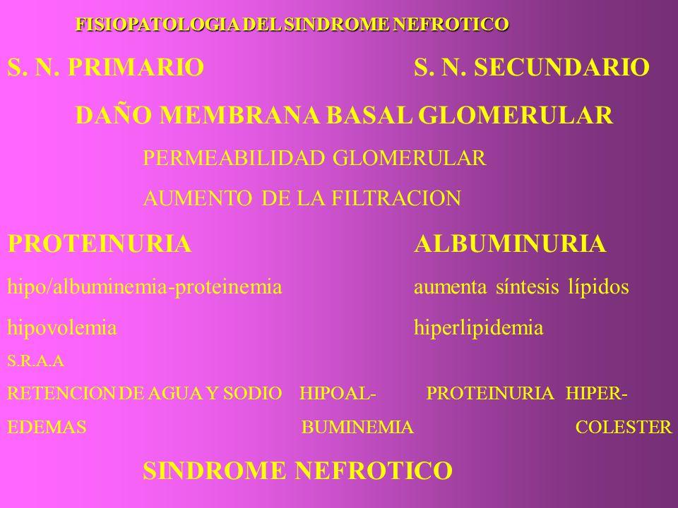 FISIOPATOLOGIA DEL SINDROME NEFROTICO S. N. PRIMARIOS. N. SECUNDARIO DAÑO MEMBRANA BASAL GLOMERULAR PERMEABILIDAD GLOMERULAR AUMENTO DE LA FILTRACION