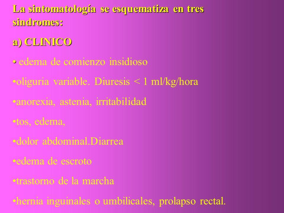 La sintomatología se esquematiza en tres sindromes: a) CLINICO edema de comienzo insidioso oliguria variable. Diuresis < 1 ml/kg/hora anorexia, asteni