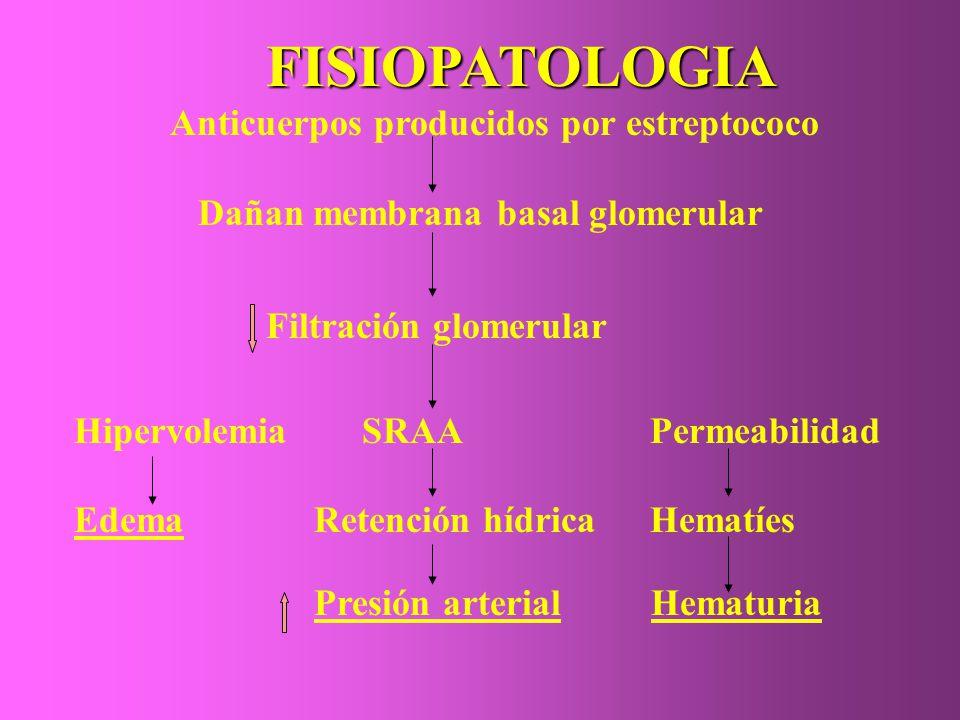 La sintomatología se esquematiza en tres sindromes: a) CLINICO edema de comienzo insidioso oliguria variable.