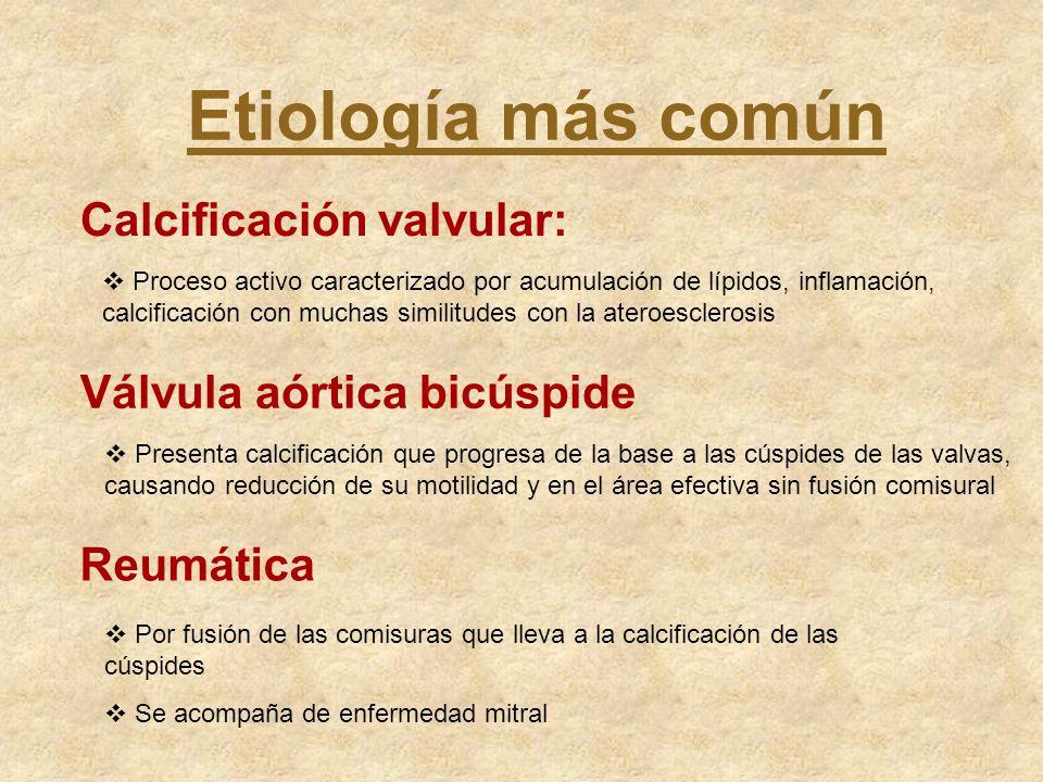 Etiología más común Calcificación valvular: Proceso activo caracterizado por acumulación de lípidos, inflamación, calcificación con muchas similitudes